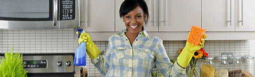 Cleaners Crystal Palace House Cleaning Crystal Palace SE19